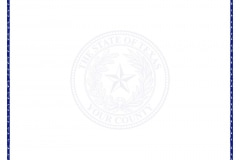 Texas County Seal Paper LEGAL Light