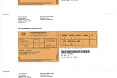 Voter Registration Cards Front